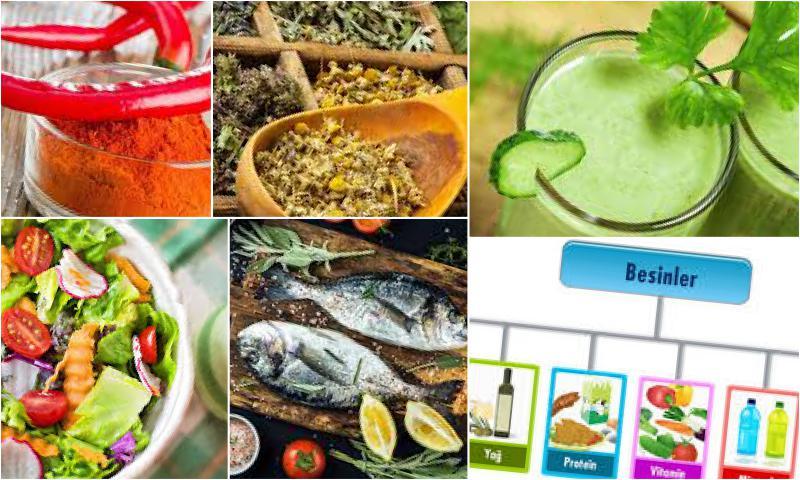 Hastalıkların Tedavisi İçin Uygulanan Diyet Programları