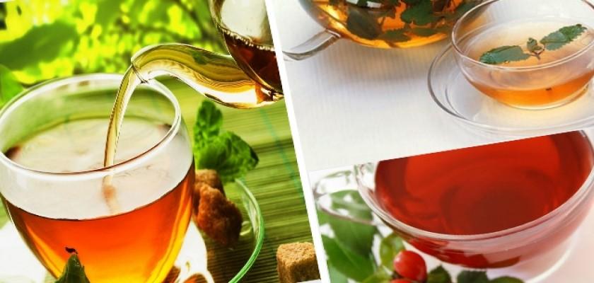 Bitki Çayları ve Faydaları Nelerdir?