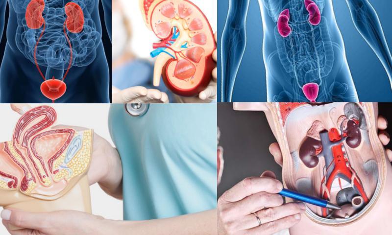Branşında En Başarılı Üroloji Doktorları